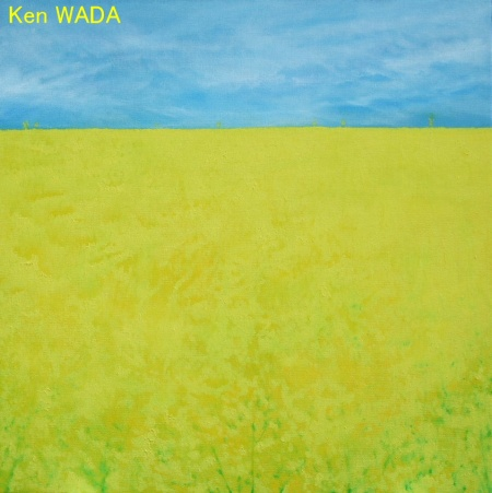 Les champs de colza 12