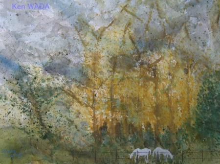 Paysage de La Vallee de L'Eure 15